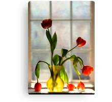 light in the window Canvas Print