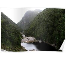Serpentine River Valley Poster