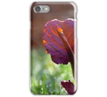 Leaf | Center Moriches, New York iPhone Case/Skin