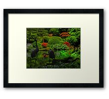 Two Black Herons Framed Print