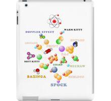 BIG BANG THEORY iPad Case/Skin