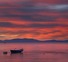 Beautiful...  by Richard Thelen