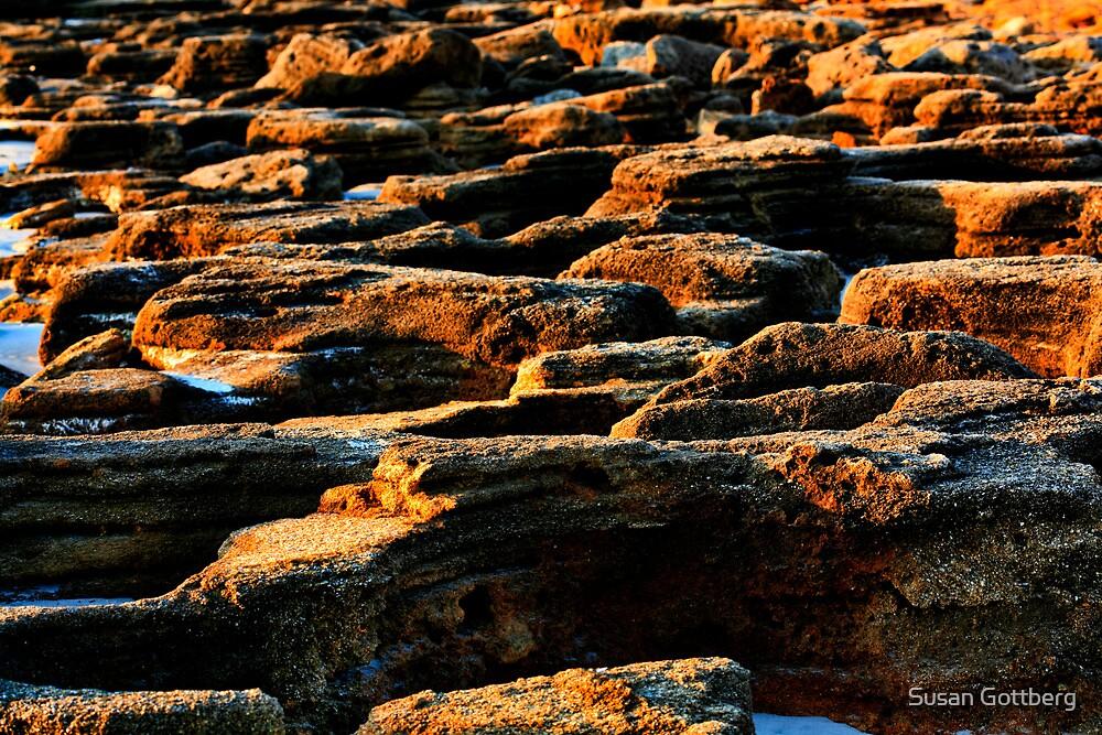 Beach Rocks by Susan Gottberg