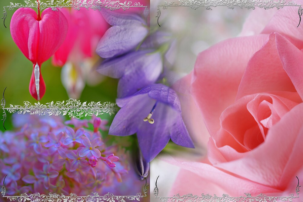 Gladness Abounding ~ Summer Flowering by JETAdamson