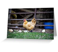 Hen and her chicks Greeting Card