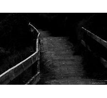 the path 005 Photographic Print