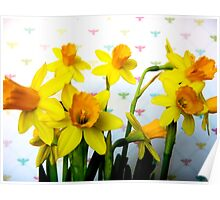 Daffodils with Colorful Bees Poster