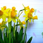 Daffodils with Birds on a Wire by CrystalFanning