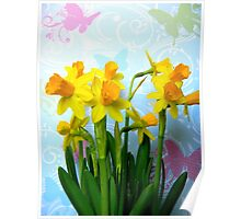 Daffodils with Colorful Butterflies Poster
