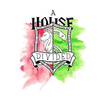 Wizard House Divided {Sly & Brave} Photographic Print