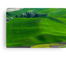 Wheat fields of Whitman County Canvas Print