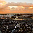 Turimetta Rocks! by Doug Cliff