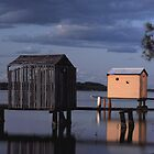 boat sheds on the maroochy river  by warren dacey