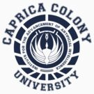 Caprica Colony University (Inverted version) by chooface