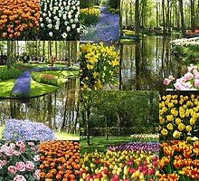 Keukenhof Gardens Collage by kathrynsgallery