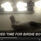 Bed Time For Birdie Boy by Jaeda DeWalt