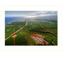 Aerial View of Southwest Kauai Art Print