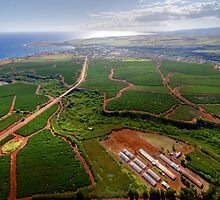 Aerial View of Southwest Kauai by thatche2
