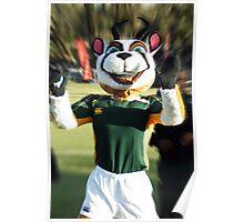 The Springbok Mascot Poster