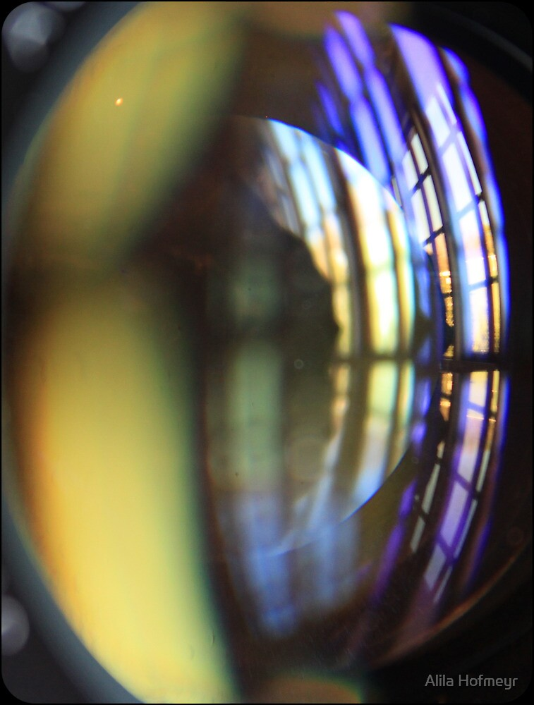 Through the looking glass by Alila Hofmeyr