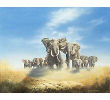 Serengeti Family Photographic Print