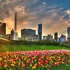 Springtime Chicago by ChicagoPhotoSho
