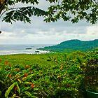 Pohnpei landscape by John Marelli