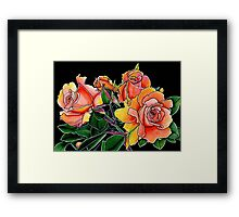 Summer Scent ~ Apricot Roses Framed Print
