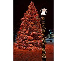 Christmas in Park Square  Photographic Print