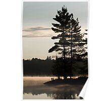 Trees, lake, mist,  Poster