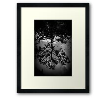 Droplets of Thoughts Framed Print