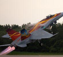 CF-18 Hornet by Mark  Spowart