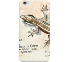 African Striped Skink - Not so easy! iPhone Case/Skin