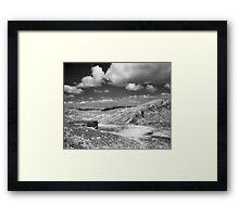 Wolf Ridge, Marin Headlands Framed Print