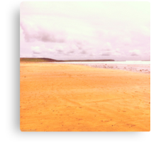 Freshwater Beach Canvas Print