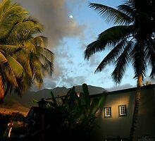 Hawaii Moon by GreyCard