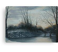 A winter lake Canvas Print