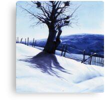 Awaiting spring Canvas Print