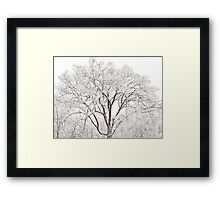 Ice Tree - Ten Million Chimes  Framed Print