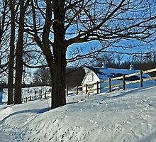 Blue Monday.  White Winter.  by Rebecca Joppru Connolly