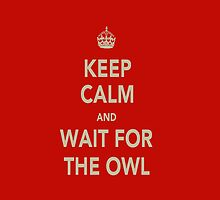 Keep Calm & Wait For The Owl by NooriiElBeh