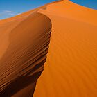 Coral Pink Sand Dunes Ridge — Detail by Shane Moss