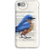Bluebird and Helix iPhone Case/Skin