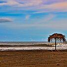 Beach Near Jaco, Costa Rica by Wanda Dumas