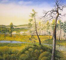 Morning swamp by Veikko  Suikkanen