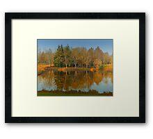 Orange Reflection Framed Print