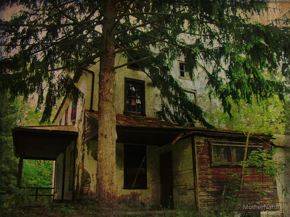 The Old House Where Nobody Lives by MotherNature