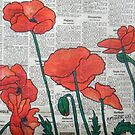 Newspaper Poppies II by Alexandra Felgate