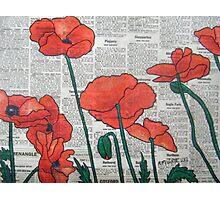 Newspaper Poppies II Photographic Print