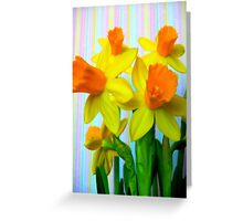 Daffodils and Stripes Greeting Card